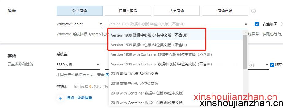 Windows Server Version 1909 数据中心版64位中文版(不含UI)镜像操作系统